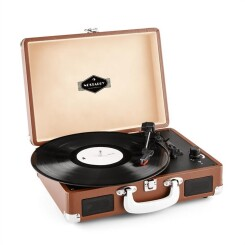 Peggy Sue Platine Vinyle Rétro Lp Usb -Marron
