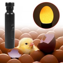 1 Pc Portable Noir Cool Light LED Bougie Lampe Incubateur Super Bright Egg Candler Testeur Nouveau