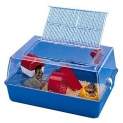 Cage hamster mini duna + accessoires